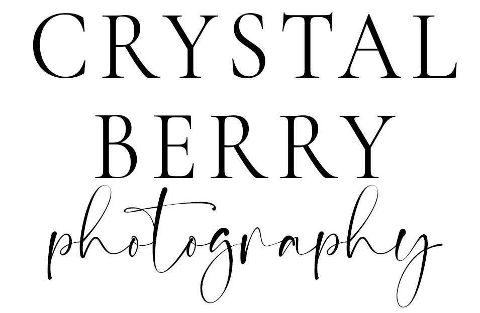 Crystal Berry Photography | Madison, WI Family Photographer